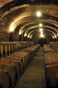 лучшие вина Нового Света-3