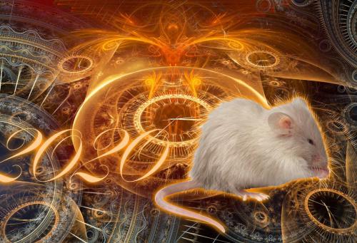 Точный гороскоп на 2020 год для Крысы