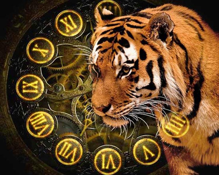 Точный гороскоп на 2020 год для Тигра