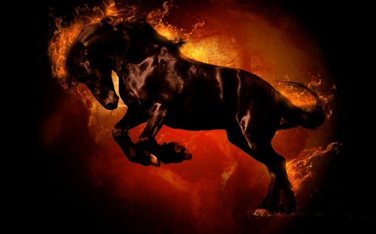 Точный гороскоп на 2020 год для Лошади